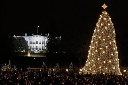 christmastreewhitehouse