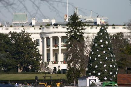 whitehousechristmastree